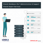 oracle database support 24x7